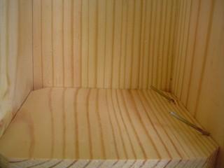 scd-nest-boxes #1 06-25-2007