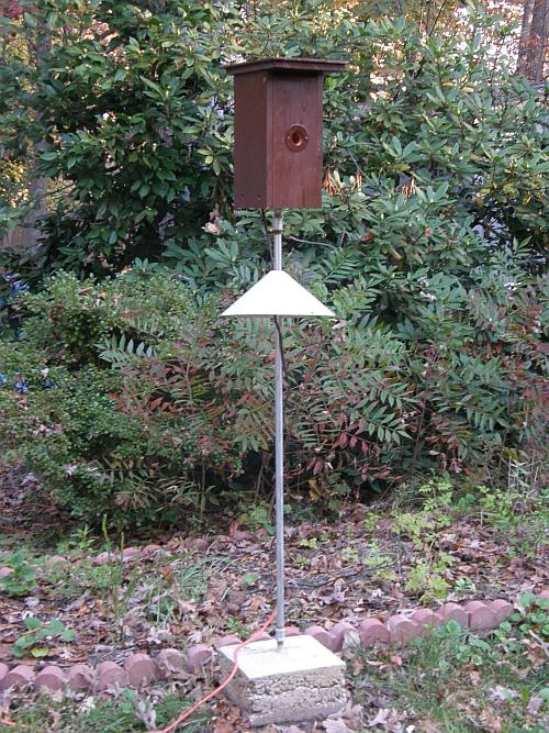 Heated Bluebird Winter Roost Box Help For Bluebirds Org