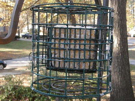 Squirrel proof round caged feeder